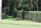 Brookfield NSW Wire fencing 15